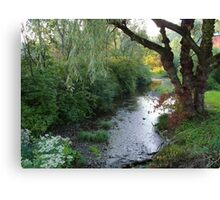 Willow by the Wood Canvas Print