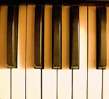Piano Forte by Susan A Wilson