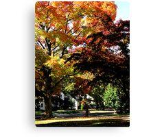 Suburban Autumn Canvas Print