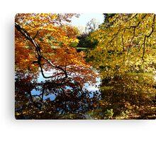 Golden Autumn Trees Canvas Print