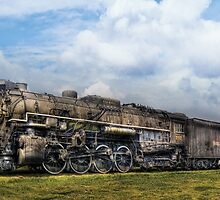 Train - Nickel Plate Road by Mike  Savad