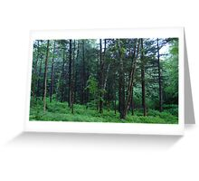 Vermont in the Springtime, United States Of America  Greeting Card