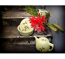 Cactus Flower With Vintage Hall Cactus China Photographic Print