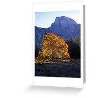 English Elm & Half Dome #2 Greeting Card