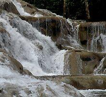 Dunn's River Falls Close View by Rosalie Scanlon