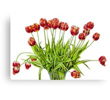Painted Tulips Canvas Print