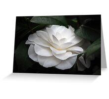 Quiet Elegance Greeting Card
