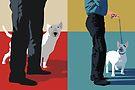 Bull terriers by Matt Mawson
