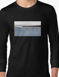 Canadian Geese Takeoff Long Sleeve T-Shirt
