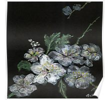 White Cherry Blossoms 02 Poster