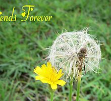 Friends Forever Card or Print by melodyart