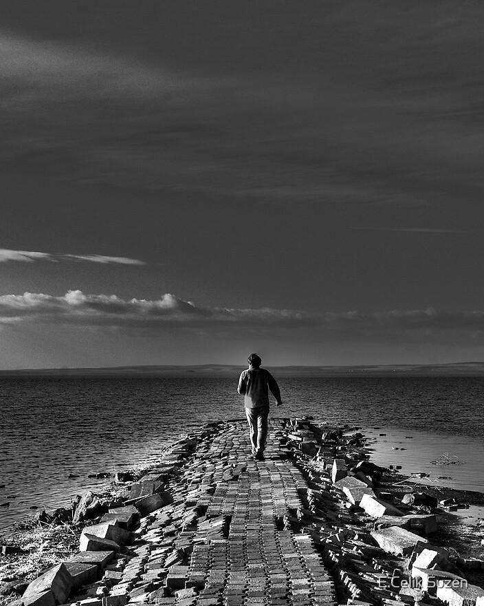 Aimless Desire by E.Celik Suzen