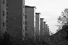 prora back side by jomaot