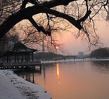 Sunset in the Nan hu park by nicolaMY