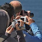 We watch whales by awefaul