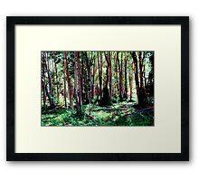 Trees #1 Framed Print