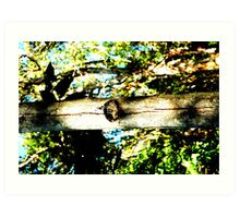 tree trunk #2 Art Print