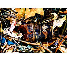 Deep in the dirt Photographic Print