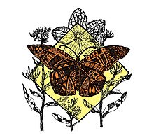 Monarch Butterfly Sketch - Color by Hinterlund