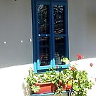Geraniums in window by Ana Belaj