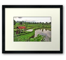 Typical Bali..... Framed Print