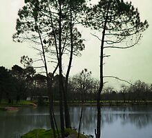 Parc de Monsalut by the-froggy-33