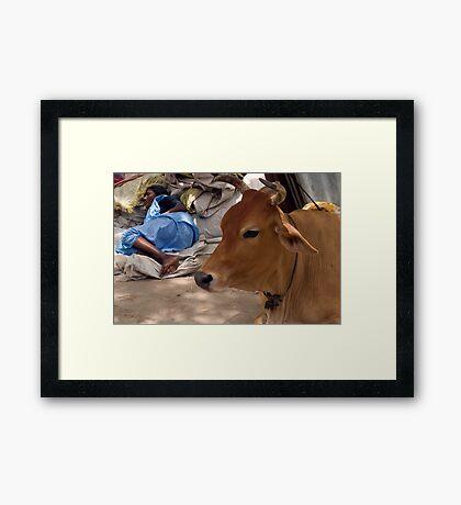 Pilgrim. Tiruchendur Framed Print