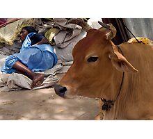 Pilgrim. Tiruchendur Photographic Print