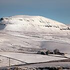 Penyghent From Langcliffe by SteveMG