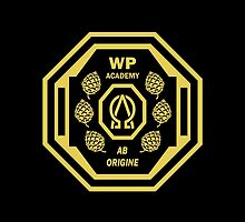 Wayward Pines Academy by Fink76