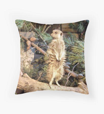 The Meerkat . Throw Pillow
