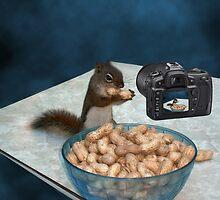 CHIPMUNK ENJOYING HIS PEANUTS,PILLOWS,PICTURE,TOTE BAG ECT.. by ✿✿ Bonita ✿✿ ђєℓℓσ
