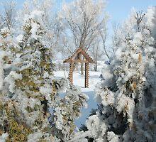 Snowy Scenery by Crystal Zacharias