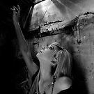 Seeking the Light by J. D. Adsit