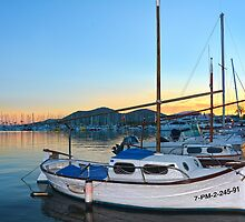 Port Of Alcudia Boats by Jim Wilson