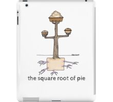 The Square Root of Pie iPad Case/Skin