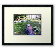 Hodsock Priory snowdrops Framed Print