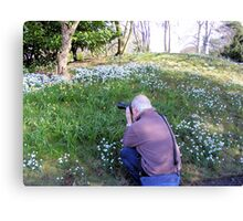 Hodsock Priory snowdrops Canvas Print