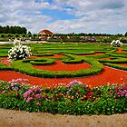 Rundale Palace - Roses garden  by marco10