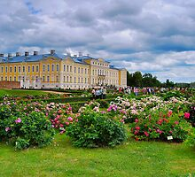 Rundale Palace - Roses garden 2 by marco10