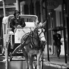 Horse and Buggy by Chris Moore