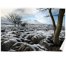 Ingleborough From Southerscales Poster