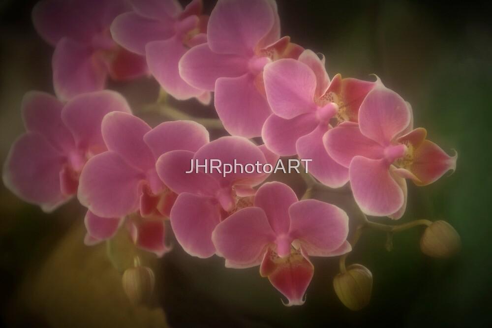Tropical Cascade by JHRphotoART