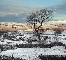 A Winskill Winter by SteveMG