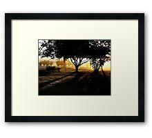 Georgia's Morning Glow Framed Print