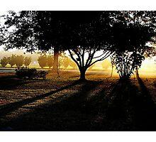 Georgia's Morning Glow Photographic Print