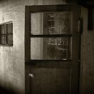 Abandoned and Haunted by Stephen  Van Tuyl