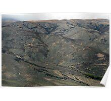 Barren hills of Otago Poster