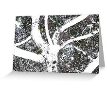 A Day At The Arboretum #3 - Treeish Framework #1 Greeting Card