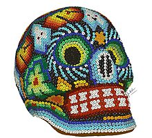 Mexican Skull  by ferwicker